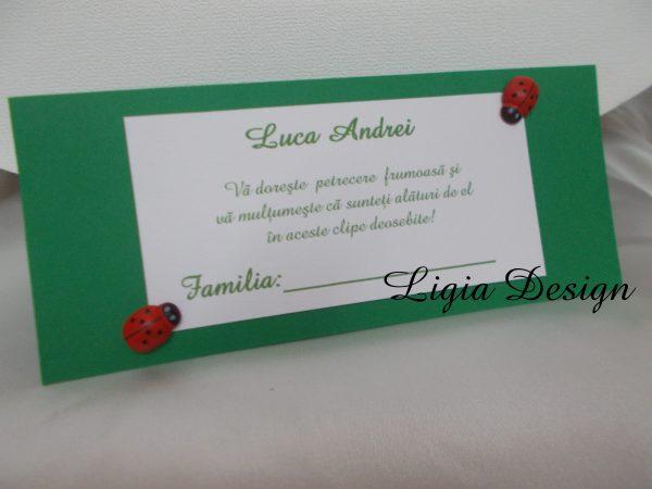 plic de bani verde cu gargarite
